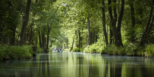 Thumbnail for Grundlagen des nachhaltigen Tourismus
